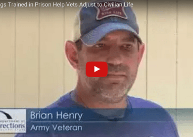 Dog Power: Helping Vets in and Out of Prison
