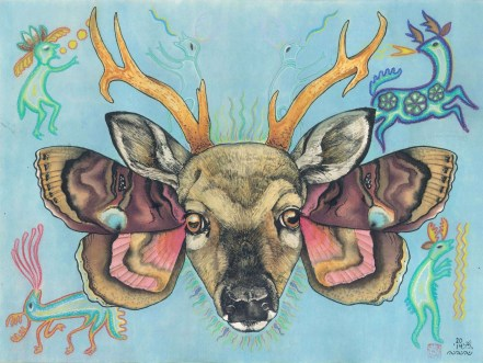willis_bart_huichol-deer-moth