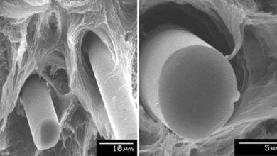 Photo of Механические свойства PP / PA смесей, армированных базальтовым волокном