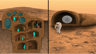 Photo of RedWorks is developing a design concept of habitat for Mars colonists