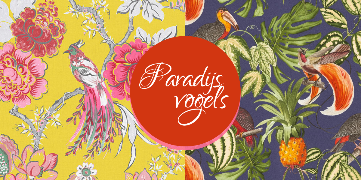 Behangtrend: paradijsvogels