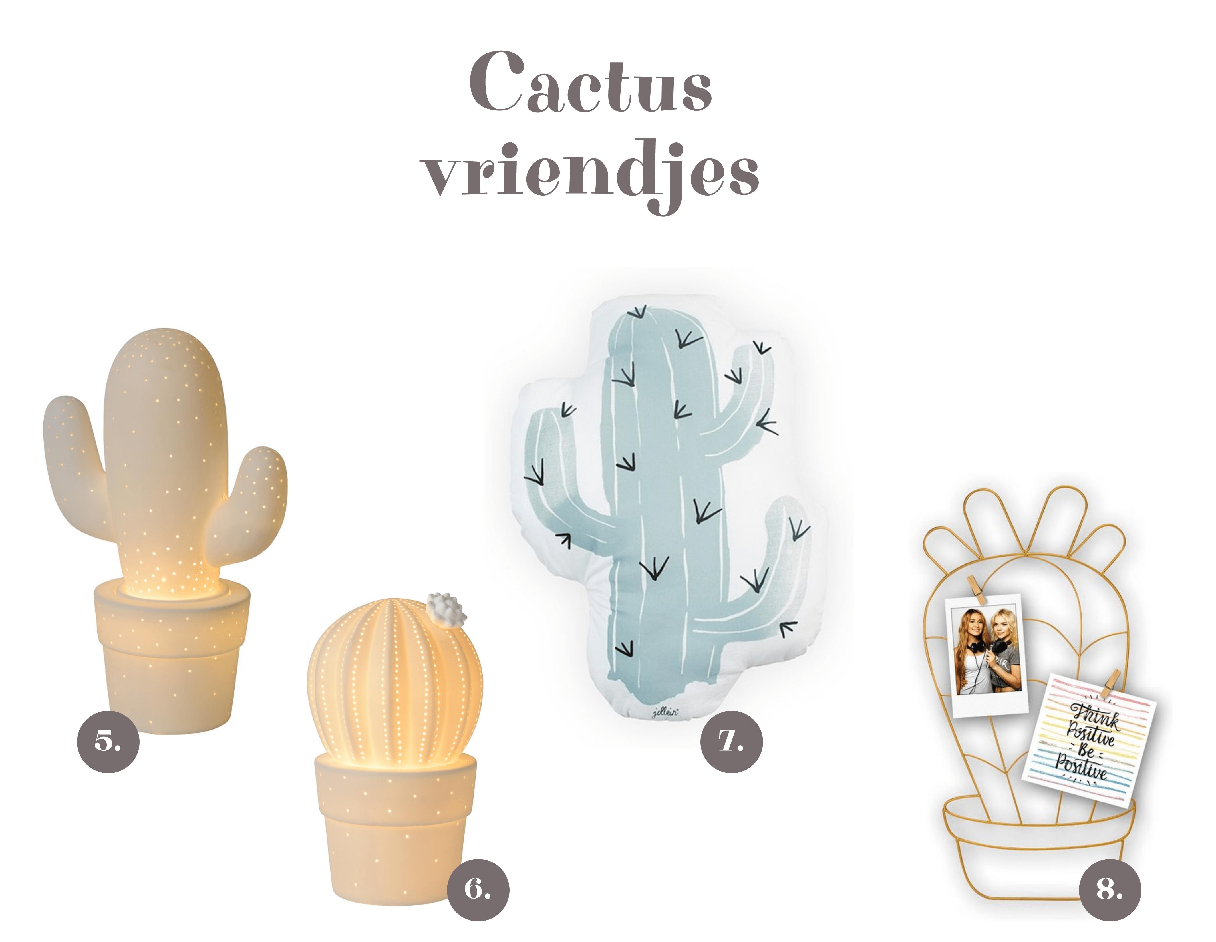 Cactus vriendjes