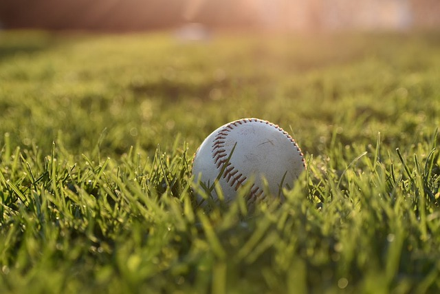 look below for a excellent tips about baseball - Look Below For A Excellent Tips About Baseball