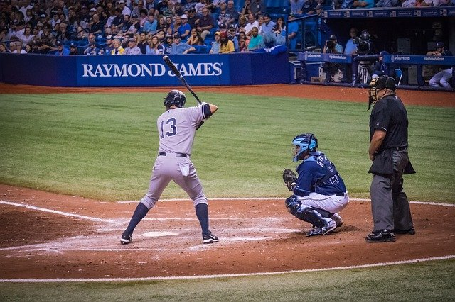 what you ought to know about baseball 1 - What You Ought To Know About Baseball