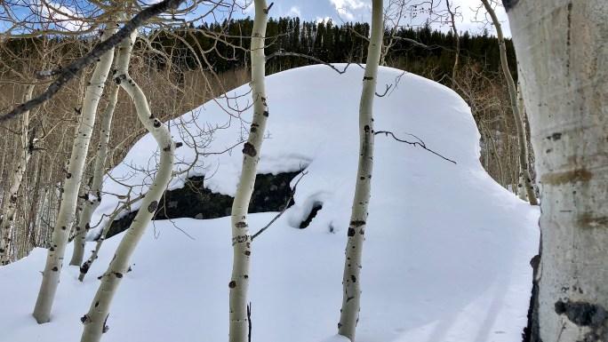 Cross Creek Snowshoe Adventure
