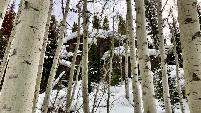 Rock outcropping Red Cliff Snowshoe