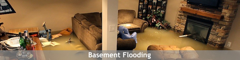 What To Do When Your Basement Floods