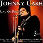basgann-johnny-cash-ring-of-fire