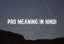 Pro Meaning In Hindi