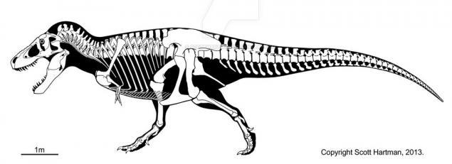 Fisiología comparada de los dinosaurios y las aves