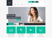 90 Best Business Website Templates 2013  Bashooka