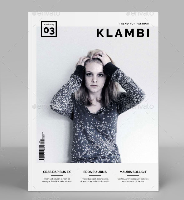 34 High Quality PSD  InDesign Magazine Templates  Web  Graphic Design  Bashooka