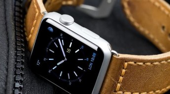 Watch-Gecko-Apple-Watch-Brown_band