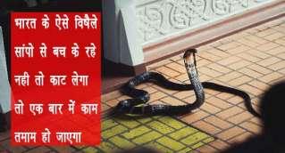 bharat ka sbse jahrilaa saanp