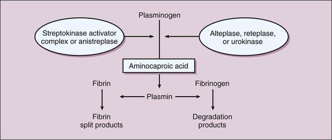 Anistreplase
