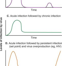 patterns of viral infection in these line diagrams various patterns of viral infection are shown including a acute viral infection followed by viral  [ 554 x 1424 Pixel ]