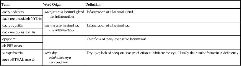 Special Senses: Eye and Ear   Basicmedical Key