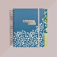 Boxclever Press Budget Planner.