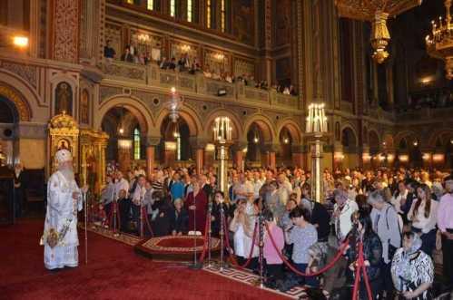 IPS Ioan - slujire Catedrala Timisoara (4)