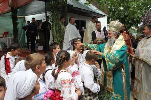 IPS Irineu 2017 - Dăbuleni (5)