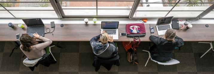 The Hybrid Work Environment