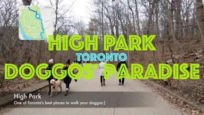High Park Toronto Map
