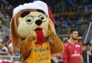 Granky comienza la competición del 'Baile de mascotas'