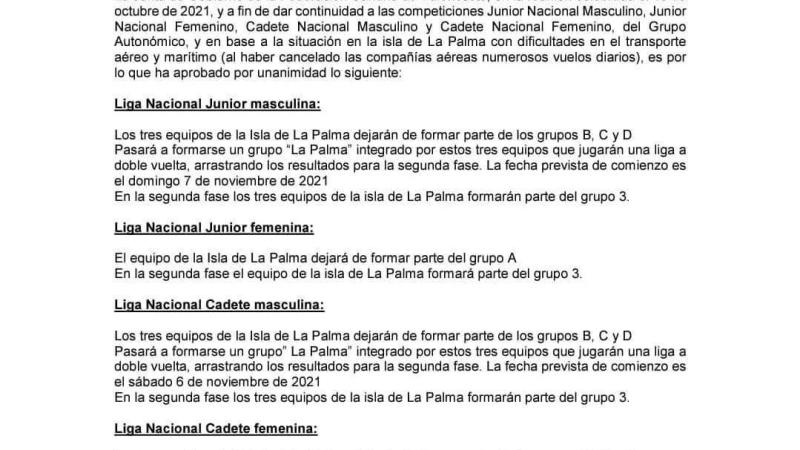 La Federación Canaria crea el 'Grupo La Palma' en Cadete y Júnior