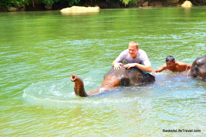 Elephant Trekking and Swimming Thailand