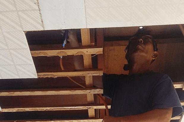Gambar Harga anti rayap terbaru dari jasa pembasmi rayap