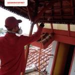 Jasa Anti Rayap di Yogyakarta