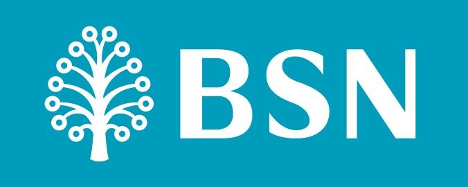 12 jutawan BSN tahun 2017