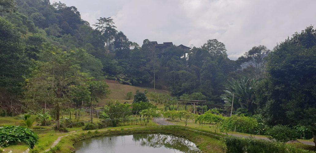 Little Farm on The Hill, Bentong