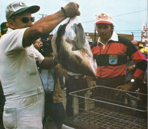 Harold Sharp weighs Paul Chamblee's day 1 catch at the 1975 Bassmaster Classic. Photo February 1976 issue of Bassmaster Magazine.