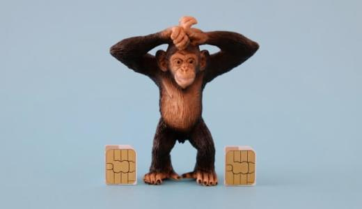 【研究結果】チンパンジーは高音より低音のリズムを感じやすいことが判明