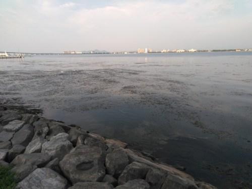 琵琶湖の浮御堂エリア