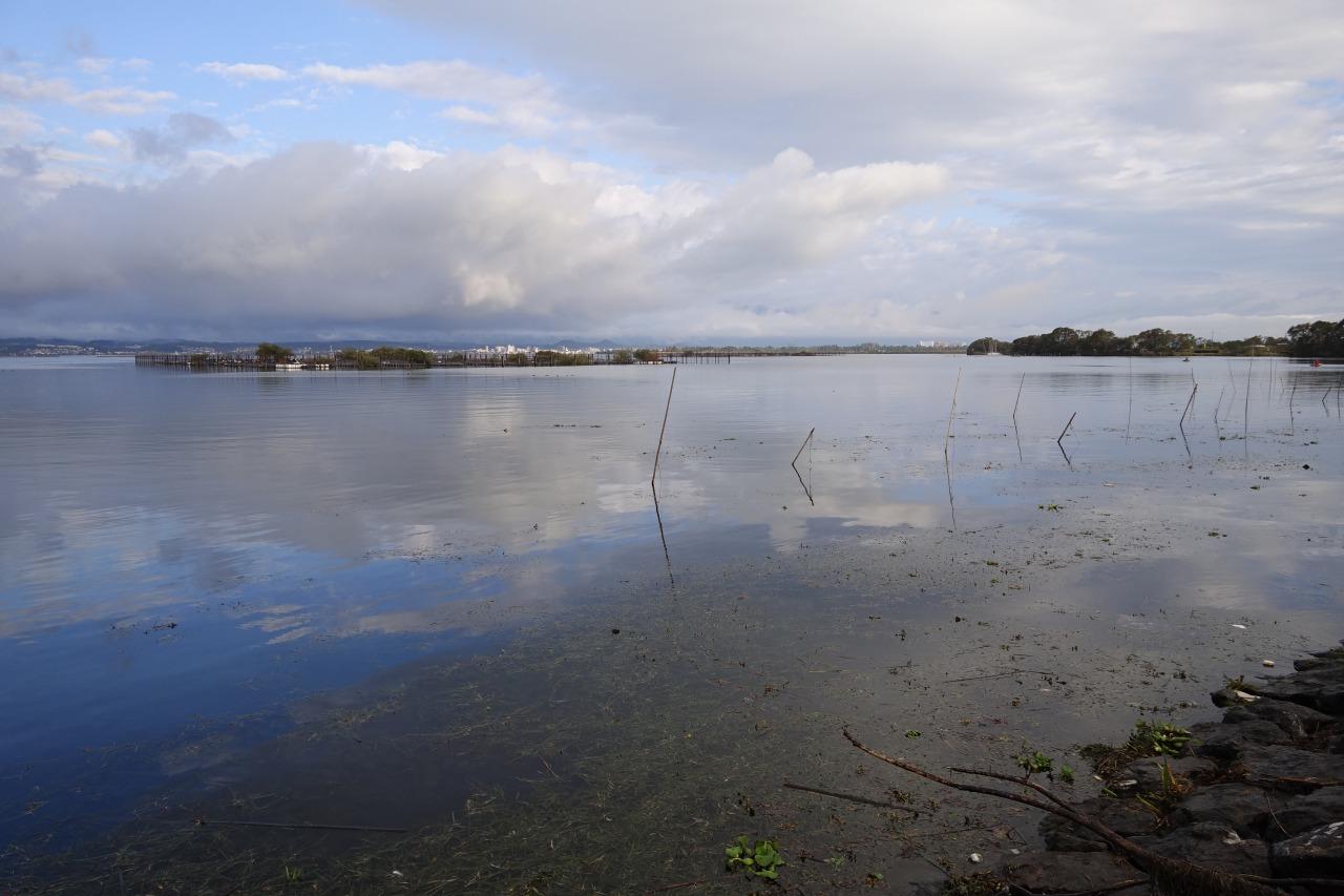 琵琶湖の赤野井エリア