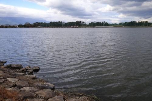 琵琶湖の木浜5号水路