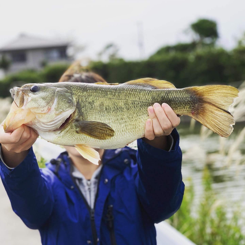 池の水ぜんぶ抜くで話題の潮来の前川で釣りガールにまた負ける