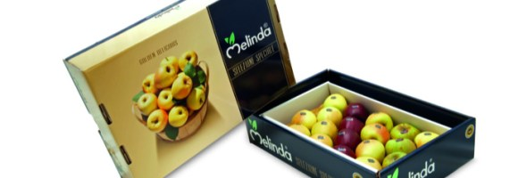 Melinda Special Edition: 