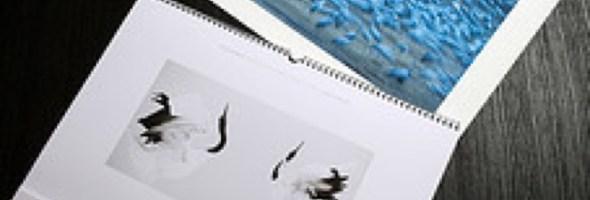 """Con """"Equilibri naturali"""", Calendario Epson 2013, protagonista la natura da proteggere"""