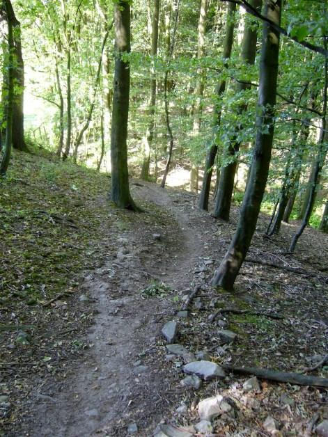 Noch mehr Trails