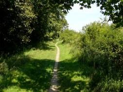 Zwischen Olfen und Lüdinghausen