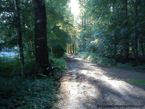 Morgens halb Acht in Dortmund