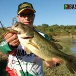 Achigã capturado com um swimbait da b8lab na cor Baby Bass