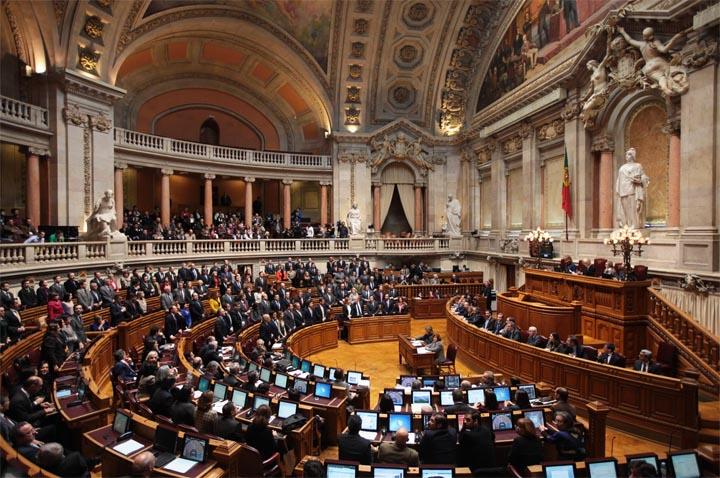 assembleia-republica-portugal-animal