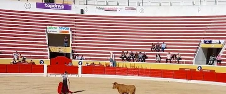 'Intermarché' e 'Riberalves' apoiam touradas?