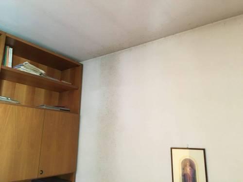Cameretta - muffa su soffitto e parete