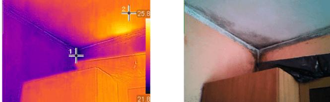 muffa termocamera 3