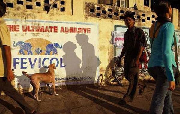 Due perfetti sconosciuti che a giudicare dalle loro ombre sembrano fatti l'uno per l'altra...
